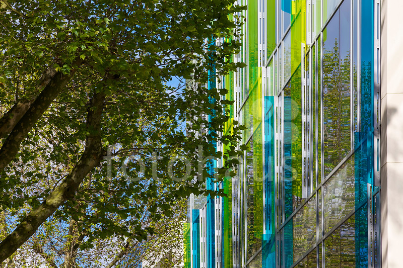 Chiswick Green