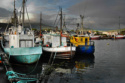 Harbor, Dingle