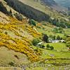Glenmacnass Valley
