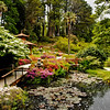 Japanese gardens at Powerscourt Castle