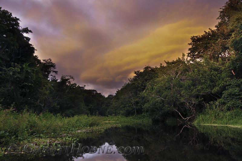 Amazon Sunset on blackwater lake.
