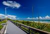 The boardwalk along the Atlantic Ocean beach in Indialantic, Florida.