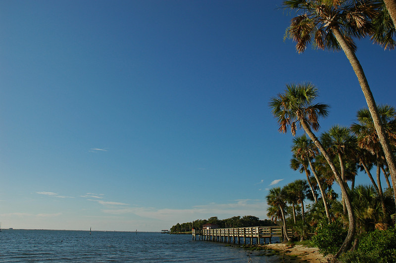 Crooked palm tree.  Not an exciting photo, but I was trying to capture the 'feel' of the open sky and water here.  At Castaways Point Park in Palm Bay.
