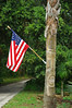 Sebastian, Florida.  I had been out taking photos, and wanted to turn around and pulled into a driveway to do so.  This was beside their driveway, so I jumped out and fired off a few shots of this flag and carved palm tree.