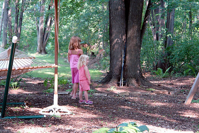 Grandchildren looking at dear in the woods.