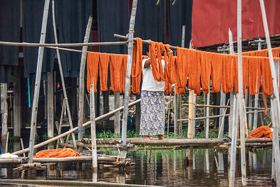 Lotus Silk Hanging to Dry
