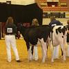 WDE16_Holstein_1M9A6736