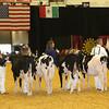 WDE16_Holstein_1M9A6727