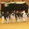 WDE16_Holstein_1M9A6730