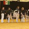 WDE16_Holstein_1M9A6732