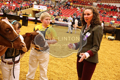 World Dairy Expo Showmanship Show 2016