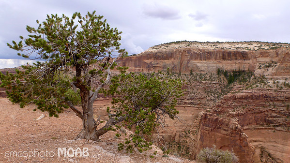Moab, USA Copyright © 2011 Alex Emes All Rights Reserved