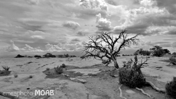 Moab, USA Copyright © 2011 Alex Emes All Rights Reserved.