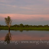 Yellow Water at sunset, Kakadu National Park, Northern Territory.