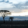 Close to sunset time at Serengeti National Park