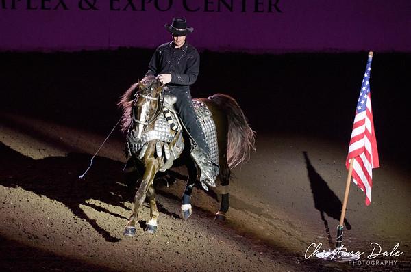 Western Dressage - Jeff Wilson