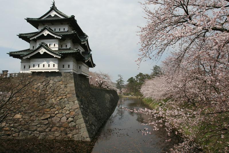 Hirosaki Castle. Taken at the Cherry Blossom Festival 2007.