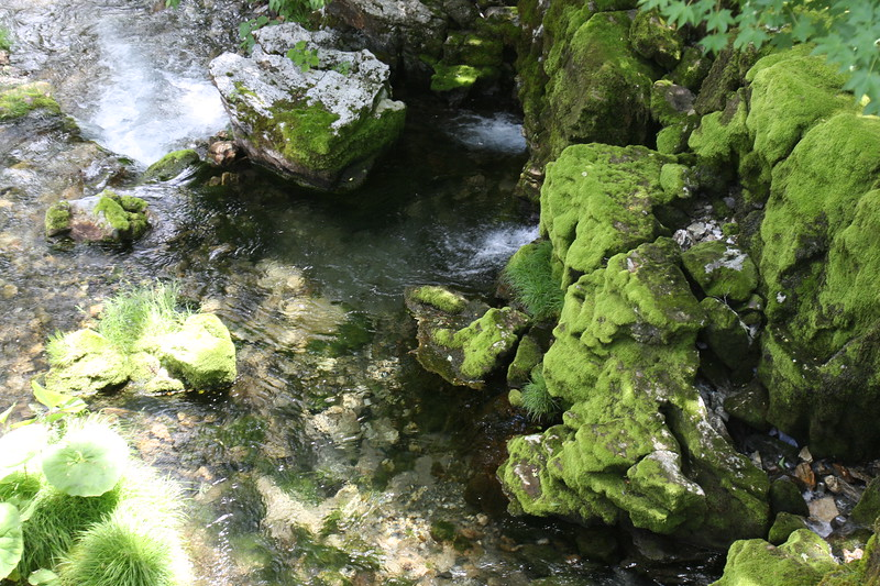 This is another part of the river by Ryusendo caves