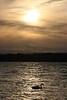 Swan Sunset Misawa1