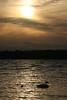 Swan Sunset Misawa
