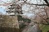 Hidden Castle<br /> <br /> Hirosaki cherry blossom festival