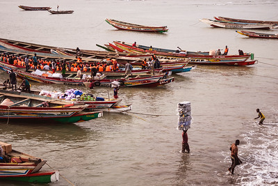 BARRA 2014-01-07 A normal day in the harbour of Barra, in the Gambia, together with people and animals waiting for the only ferry to cross the water to Banjul (another possibiliy to pass is to go with one of the small boats) Photo Maria Langen / Sverredal & Langen AB