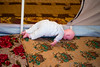 """Iraq Kurdistan 20130915 <br /> Doll on the carpet of a refugee camp close to the village of Basrma in Kurdistan. As many as 5000 Syrians refugees could be staying in this """"new"""" camp, waiting for the surrounding world to support them in where to go next.<br /> Photo Maria Langen / Sverredal & Langen AB"""