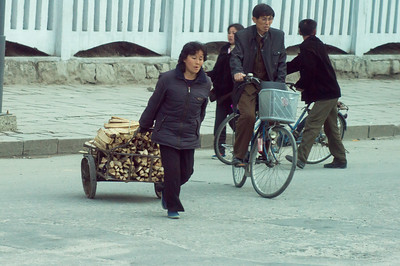 CART WITH FIREWOOD