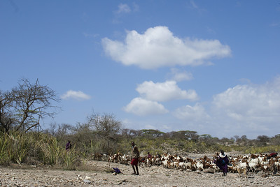 TANZANIA MAASAI LIFE 2007-12-14 Maasai peopleon the road in Tanzania Photo Maria Langen / Sverredal & Langen AB