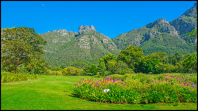 Kirstenbosch National Botanical Garden, South Africa – 2017.