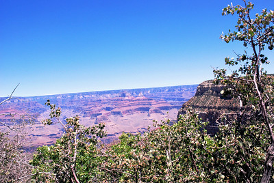 The Grand Canyon National Park, Arizona, USA - 2010.
