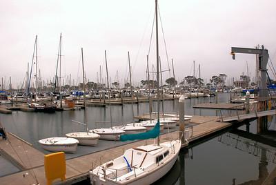 Captain Dave's Dolphin & Whale Safari, Off Dana Point, California, USA - 2010.