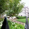Washington DC, USA - 2012.
