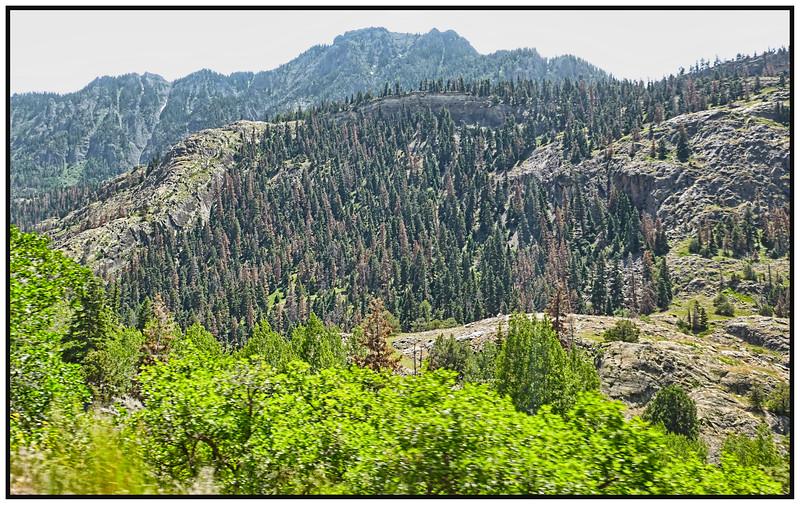 Ouray To Red Mountain Pass, Colorado, USA - 2015.