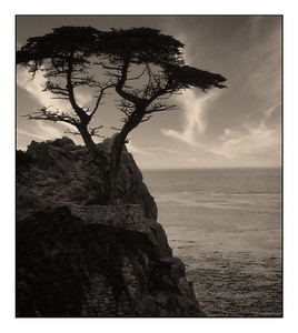 17 Mile Drive, California, USA - 1996.