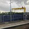 Samson and Goliath cranes, Harland and Wolff Shipyard, Belfast