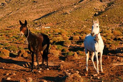 29 IMG_3357 sunrise Plateau de Tarkeddit