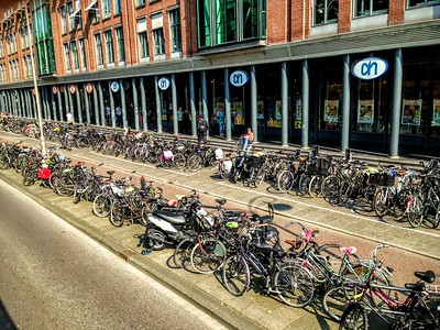 Bicycles Everywhere