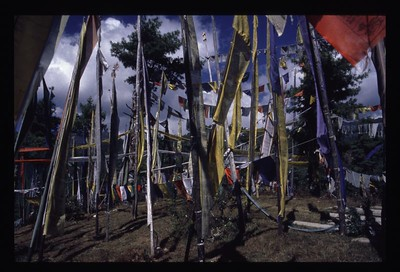16 prayer flags 86
