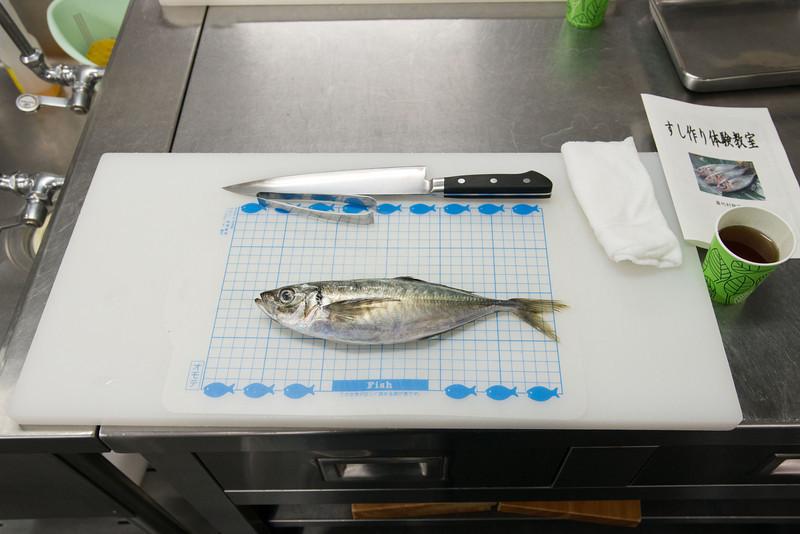 Before it was sashimi