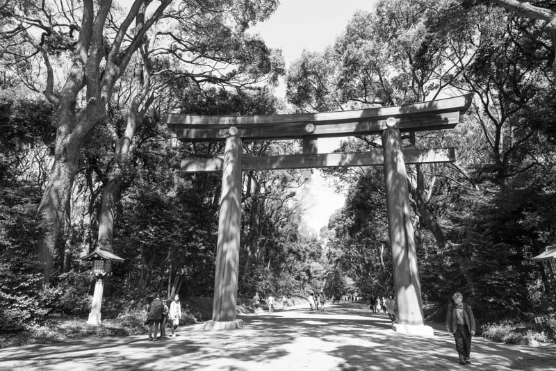 THe Meiji Shrine gate