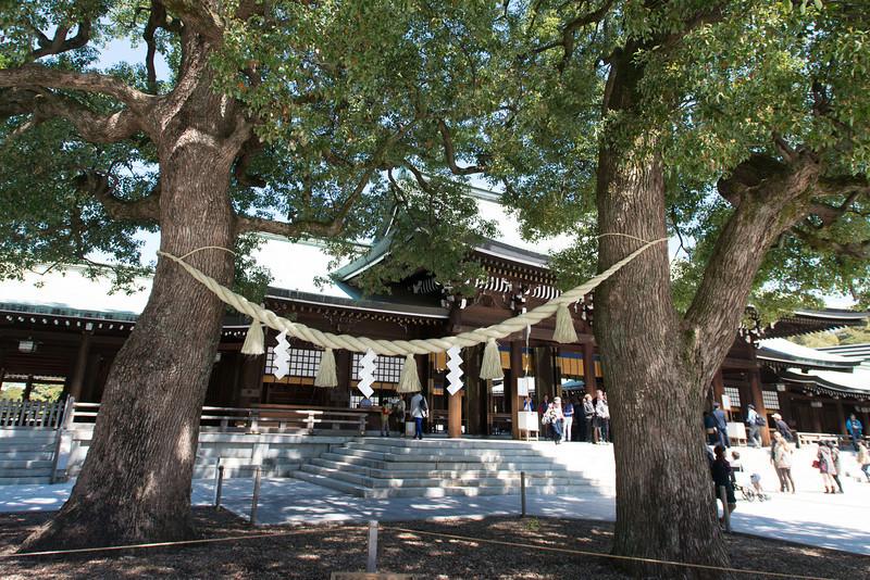 Rope full of symbolism at the Meiji Shrine