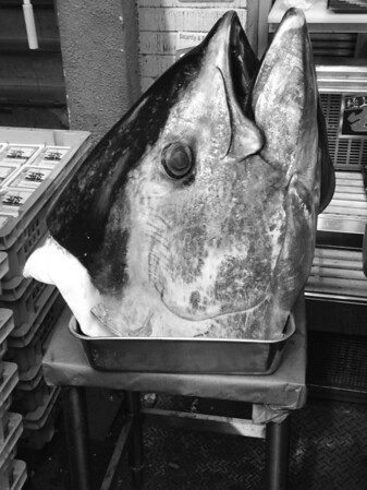 Huge fishhead... The rest of it was getting carved on the street