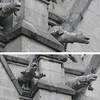 The gargoyle on the Basilica church in Quito were different than the ones I saw on my trip to Edinburgh a few years ago.