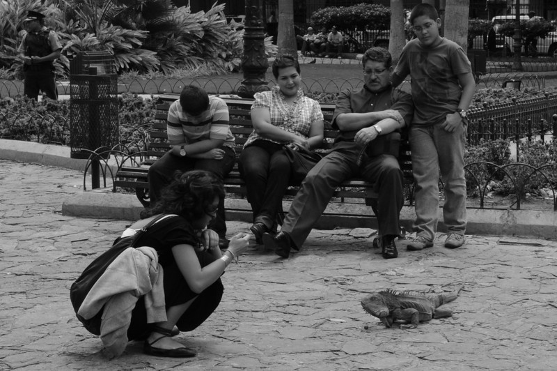 There was lots of this going on at Iguana Park in Guayaquil