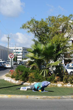 George Town had almost nothing to photograph.  It was all commercial storefront that catered to the cruise ships.  This traffic circle had a painted iguana statue.  It was the best shot I could see in the city.  What a tragedy.