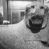 King Amenhotep III as a lion