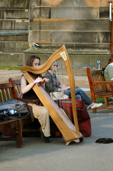 You don't see many harps in Chicago