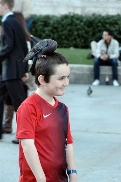 In Trafalgar Square, someone put this bird seed on this kid's head.