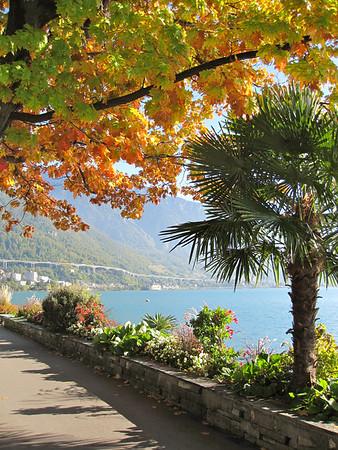 Along Lake Geneva (Switzerland, 2011)
